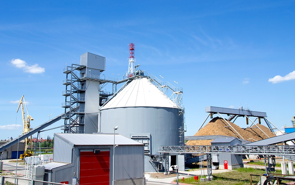 Biomass power generation facility