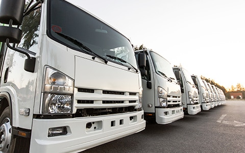 row of trucks in a fleet