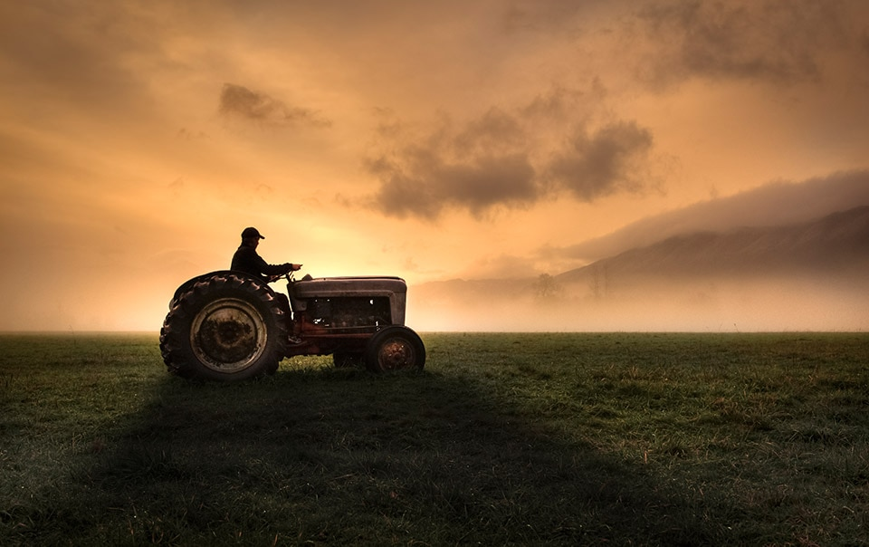 Farmer driving tractor trailer on farm at sunrise