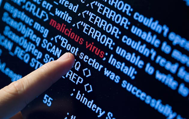 Person assess and identify malware as business risk