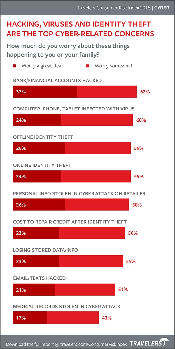Chart of top cyber-related concerns from 2015 Consumer Risk Index