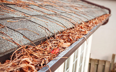 Dirty gutters that need to be cleaned in fall