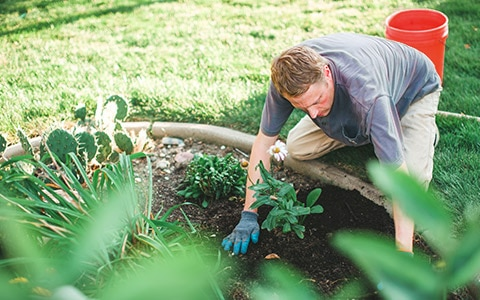 man gardening outside of his home, 10 Easy Renovations That Can Help Prep Your House for Sale