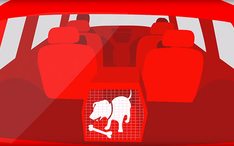 Illustration of car in back seat of car