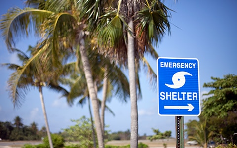 Emergency shelter sign in front of palm trees, Preparing Your Business for Hurricane Season During the COVID-19 Pandemic