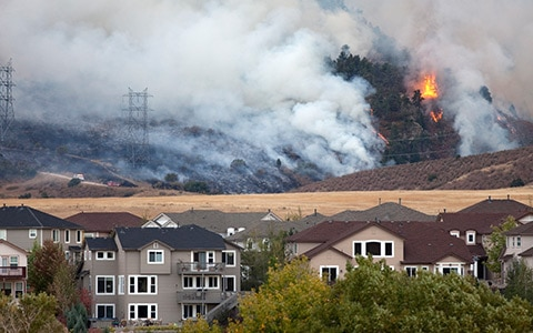 Wildfire in residential area