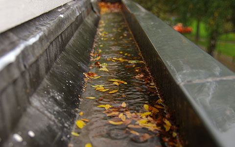 dirty gutters can cause water damage